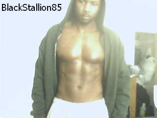 BlackStallion85 (4)