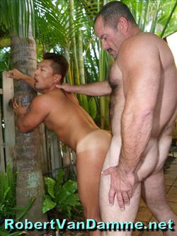 Cocks in Paradise (8)