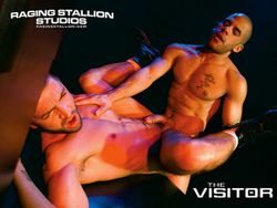 The Visitor (4)