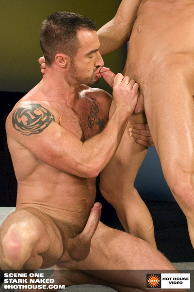 Daniel ross gets tied up and bareback fucked by luke allen 10