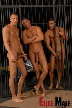 Visconti triplets онлайн порно