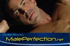 Maleperfection_net