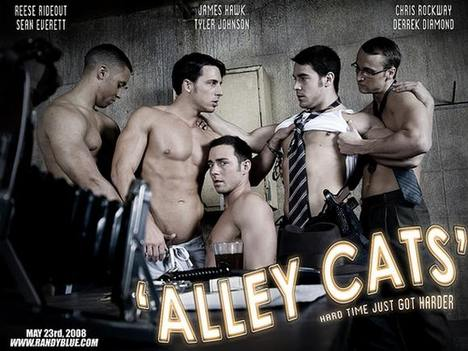 Alley_cats